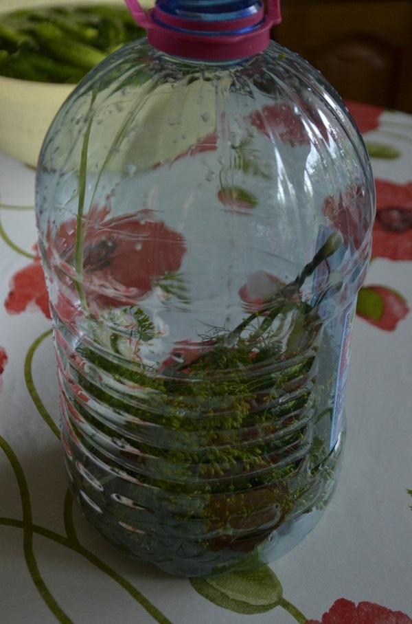 Викладіть на дно пляшки помите листя і спеції
