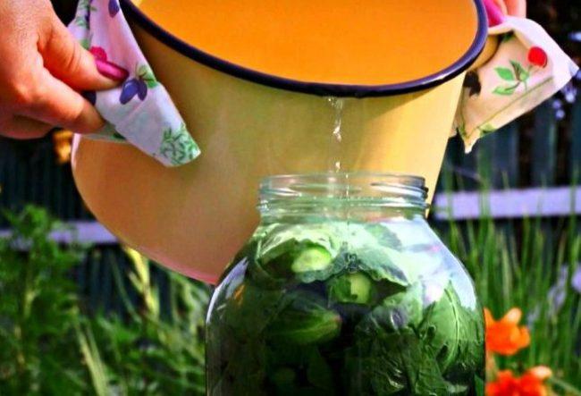 Огірки в листі хрону - рецепт приготування