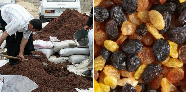 як сушать виноград